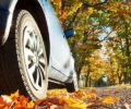 Prevent Damage To Your Car From Autumn's Falling Leaves